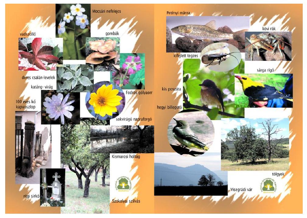 Dukay Igor - Néder Katalin: A Morgó-patak völgyének természeti és kultúrális értékei (2003) - belső borító