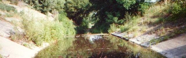 A Morgó-patak