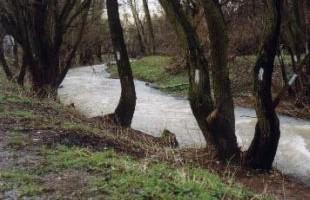 Képek a Morgó-patakról – 2000. április