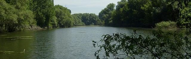 A Kis-Duna-holtág, a Kismarosi-sziget és a Sziget-rét környéke